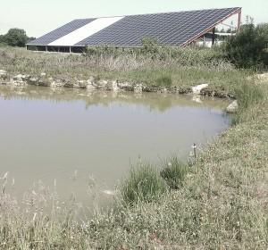 bassin2-solairebassin2-solaire